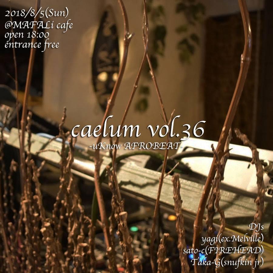 caelum vol.36