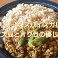 レンズ豆とオクラのスパイスカレー