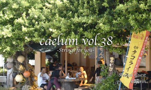 caelum vol.38