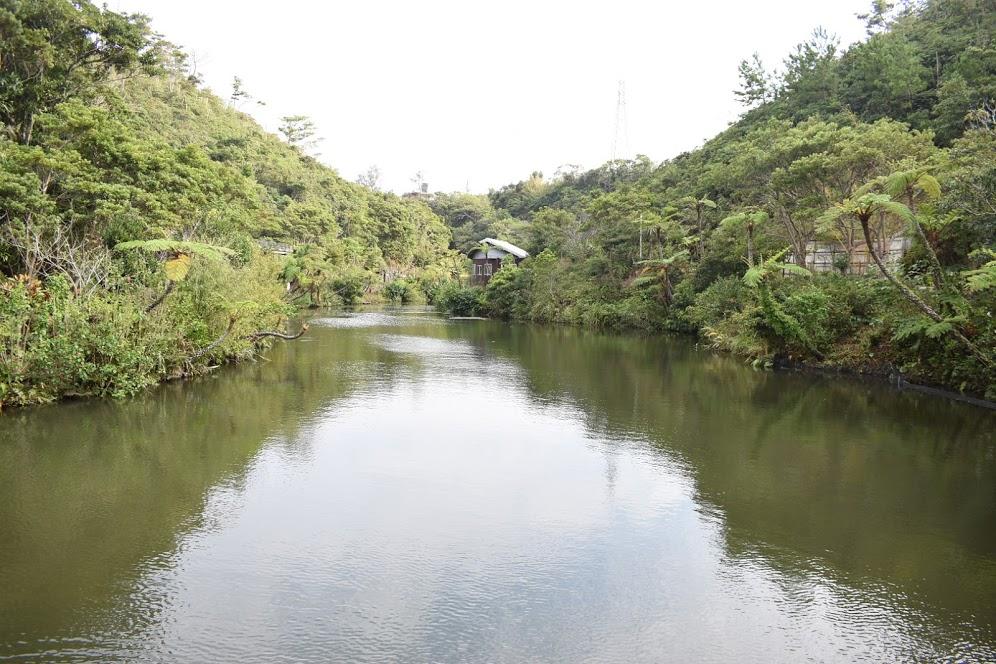 池をみながらのんびり