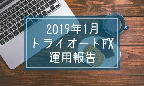 2019年1月トライオートFX運用報告