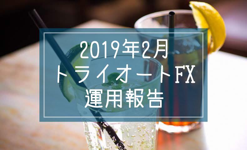 2019年2月トライオートFX運用報告